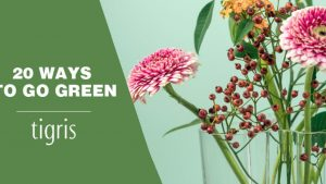 Few Ideas About Eco-Friendly Marketing By Using Seed Paper